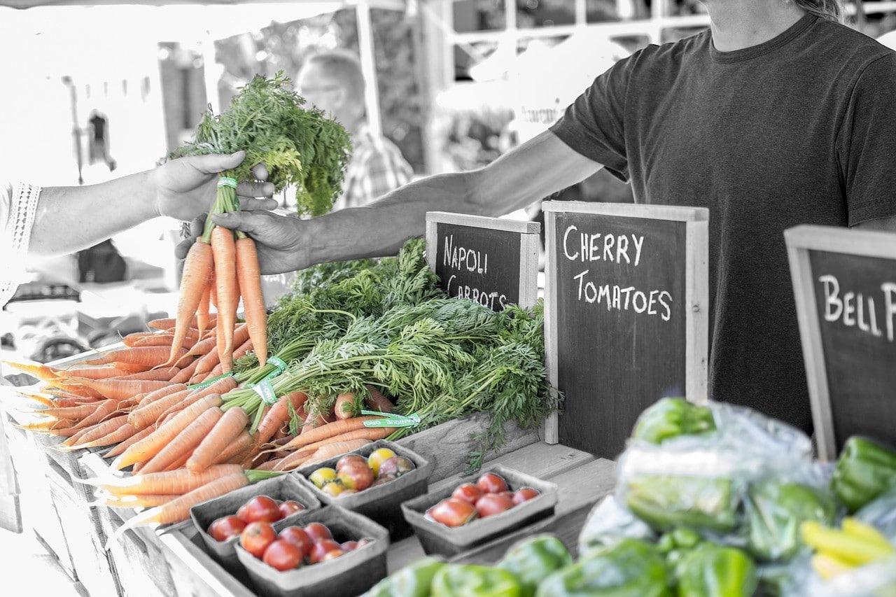 alimentos ecologicos saludables